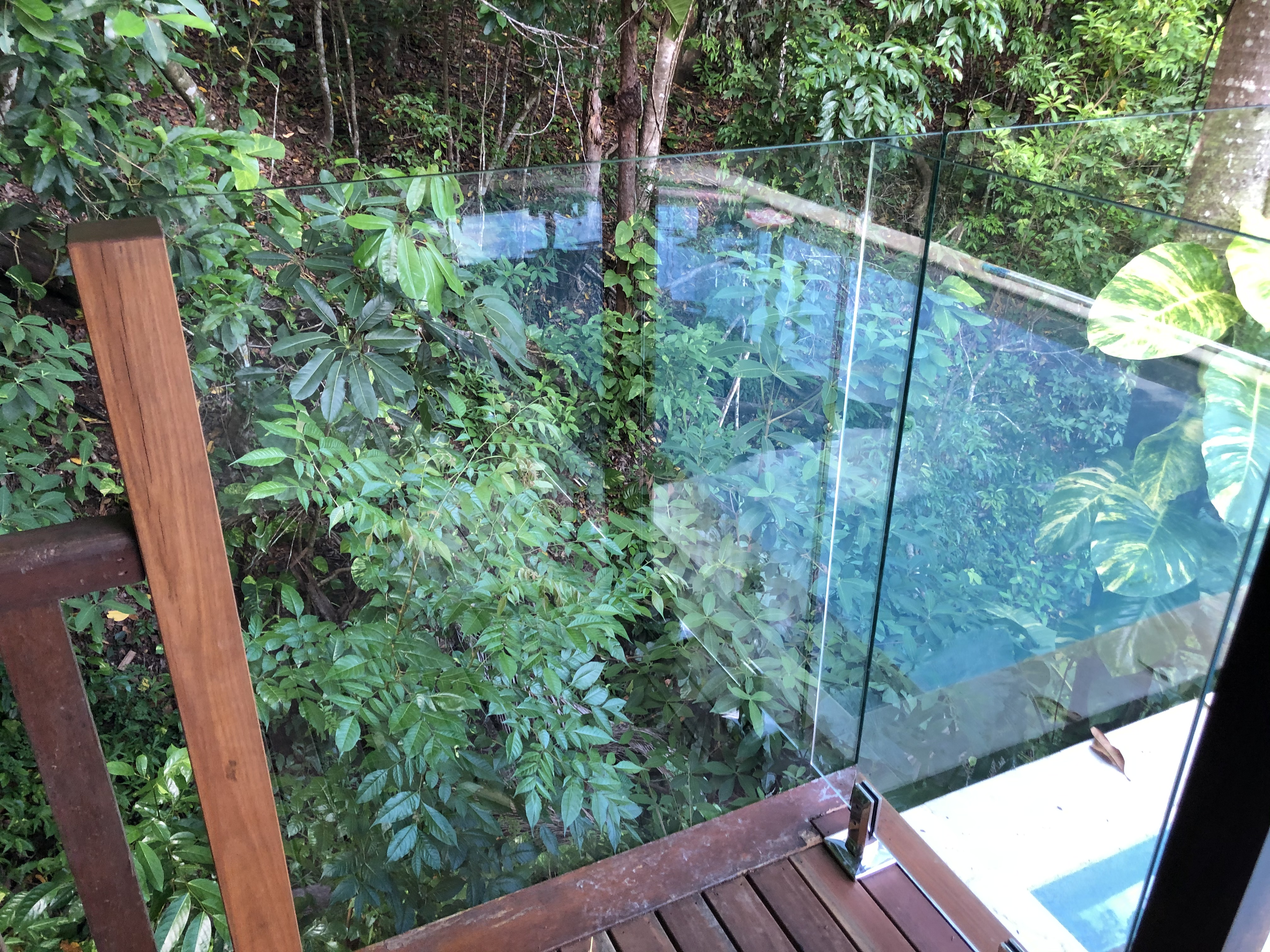 Fully Frameless glass pool fencing, with hardwood post, Daintree